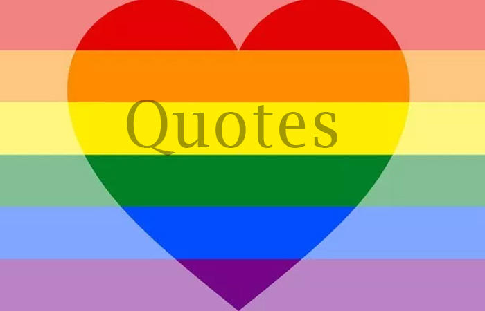 Big Quotes from Section 377