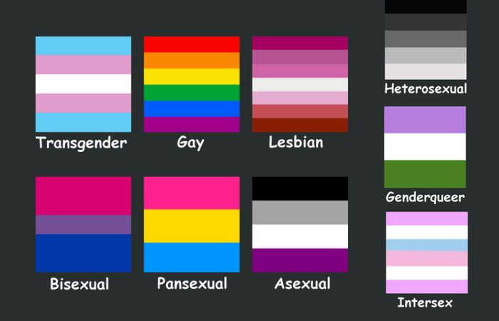 Complete Guide to LGBTQ Flags
