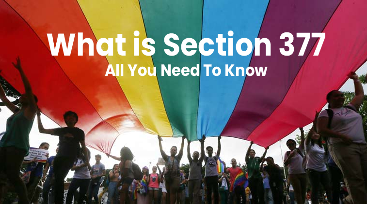 What is Section 377: All You Need To Know